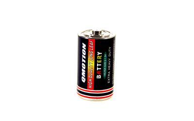 Batterieversteck Mono D
