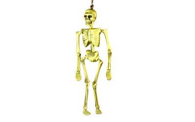 Skelett zum Aufh?ngen (40 cm)