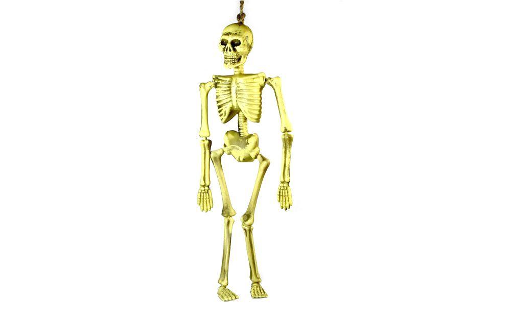 fotos aufhangen skelett zum 40 cm wohnzimmer bilder ideen